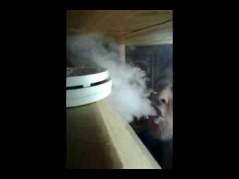 Smoke Detector vs Vaporizer.